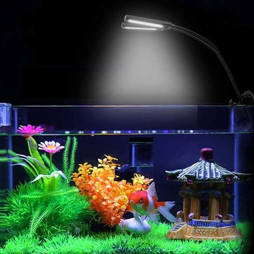 aquariumbeleuchtung
